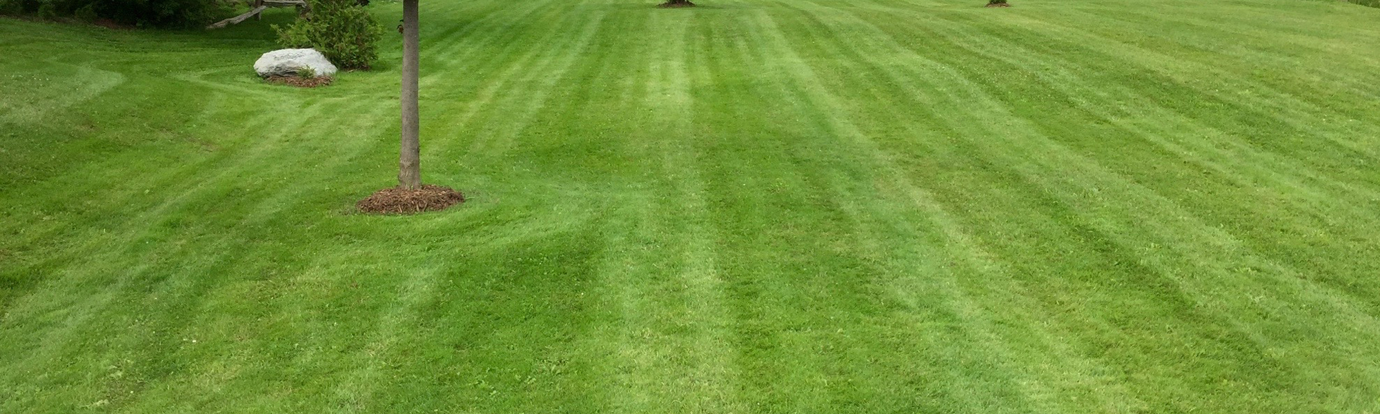Lawn Mowing Stripes in Stayner, ON