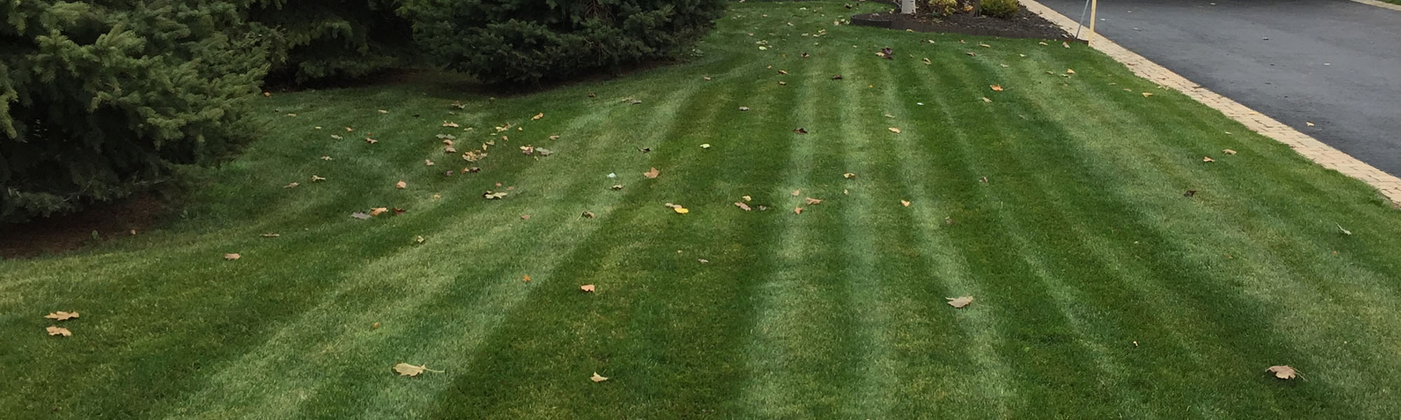 Lawn Mowing Stripes in Wasaga Beach, ON
